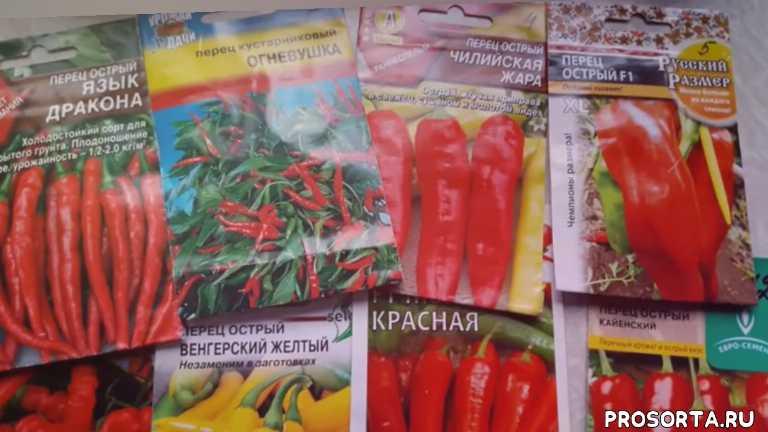 топсад, дача, огород, сад, перец каенский, перец красная молния, перец пламя дракона, перец венгерский желтый